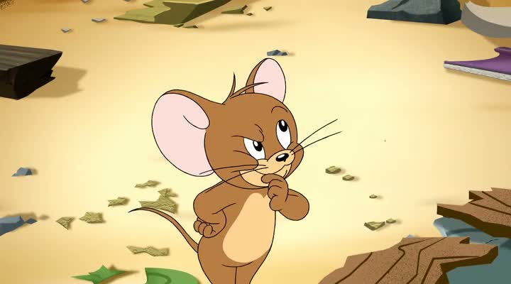Tom and Jerry The Fast and the Furry (2010)