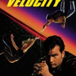 Terminal Velocity (1994) 300MB Movie Watch / Download For Free In HD 1080p