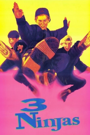 3 Ninjas (1992) 200MB BRRip 480P Dual Audio 480p