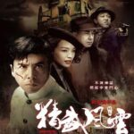 Legend of the Fist The Return of Chen Zhen 2010 Hindi Dubbed BRRip 480p