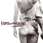 I Spit On Your Grave 2010 Dual Audio Hindi 400MB ESub Download